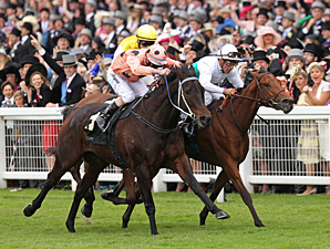Black Caviar wins the Diamond Jubilee Stakes at Royal Ascot.