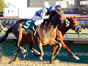 Blame wins the 2009 Clark.