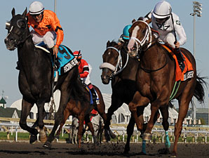 Blue Laser in the Gray Stakes, inside, orange saddle cloth.