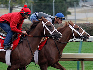 Blue Laser and Delightful Mary work towards the Breeders' Cup Oct. 25, 2010.