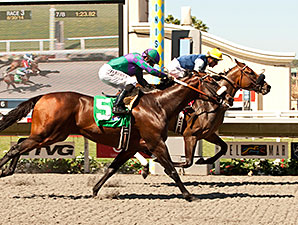 Blue Tone wins the 2014 Harry F. Brubaker Stakes.