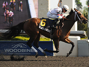 Blues Dancing wins the 2012 Lady Angela Stakes.