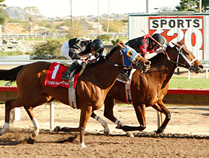 Blumin Beauty wins the 2010 Mesa Handicap.