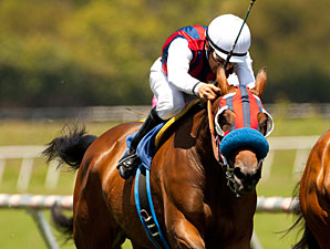 Bobina wins the 2012 Senorita Stakes.