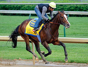 Bodemeister works 4/29/2012 at Churchill Downs