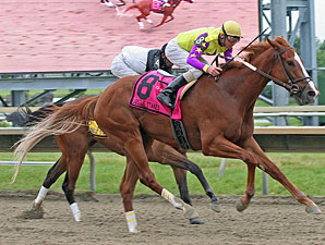 Bold Affair wins the 2011 Jostle Stakes.
