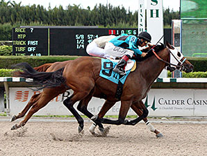 Bolita Boyz wins the 2014 Unbridled Stakes.
