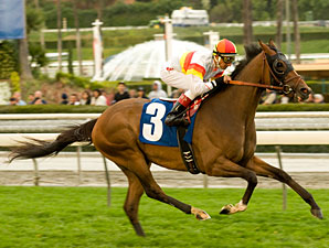 Bourbon Bay wins the 2010 San Luis Obispo.