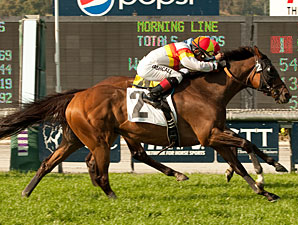 Bourbon Bay in the San Juan Capistrano Handicap.