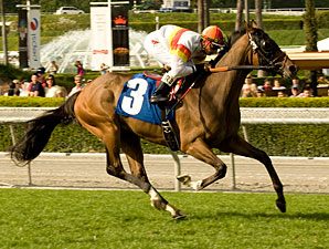 Bourbon Bay wins the 2010 Luis Rey.