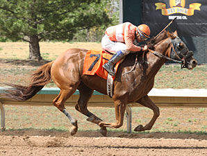 Bourbon Pride wins the Colorado Derby.