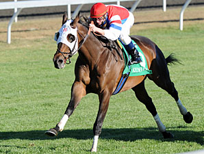 Brass Hat wins the 2010 Sycamore.
