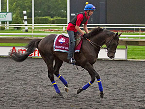 Bridge of Gold - Arlington Park, August 16, 2012.