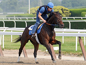 Brilliant Speed - Belmont June 1, 2011