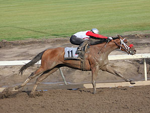 Broadway Empire wins the 2013 Canadian Derby.