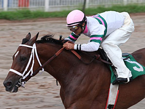 Brother Bean wins the 2009 LA Cup Sprint.