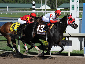 Brother Bird wins the 2012 Claiming Crown Iron Horse.