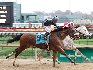 Brushed by a Star wins the 2012 Chilukki.