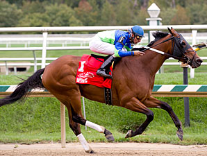 Brushed By Love wins the 2011 Maryland Million Oaks.
