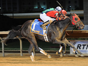 Buckle Bunny Babe wins the 2012 West Virginia Breeders Classic Distaff.