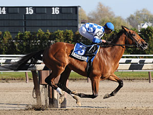 Buddy's Saint wins the 2009 Nashua.