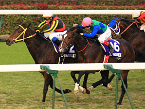 Buena Vista wins the 2011 Japan Cup.