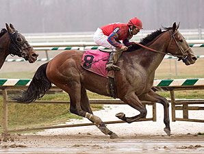 Bullsbay wins the 2009 Harrison Johnson Memorial Handicap.