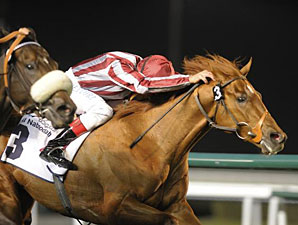 Burano wins the 2012 Meydan Classic.