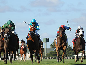 Buster Rose wins the 2014 Canterbury Stakes.