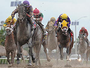 C. Zee wins the 2014 Cherokee Run Stakes.