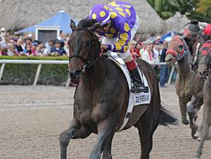 C. Zee wins the 2015 Gulfstream Park Sprint Stakes.