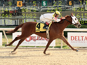 Cajun Charlie wins the 2011 Louisiana Legacy.