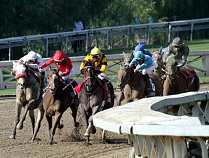 Calidoscopio wins the 2012 Breeders' Cup Marathon.