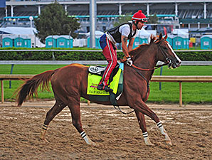 California Chrome - Churchill Downs, April 30, 2014.