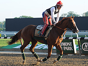 California Chrome at Belmont Park May 25.