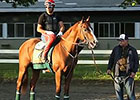 California Chrome: Assistant Trainer Alan Sherman