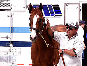 California Chrome arrives at Pimlico Park May 12.