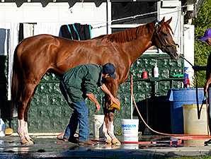 California Chrome returned fine from the track June 1.
