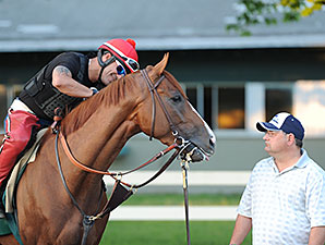 California Chrome - Belmont Park, May 27, 2014
