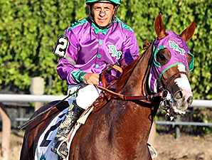 California Chrome at the Belmont Stakes.