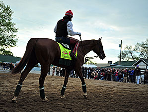 California Chrome - Churchill Downs, May 1, 2014