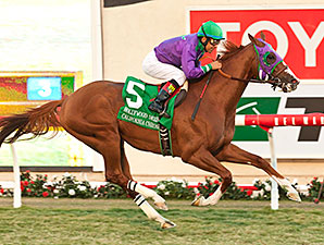California Chrome wins the 2014 Hollywood Derby.