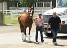 Belmont Stakes: 'Chrome' Leaves for California