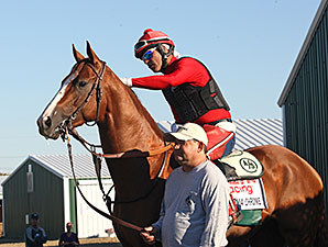 California Chrome - Parx, September 17, 2014.