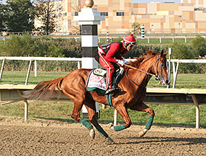California Chrome - Parx, September 19, 2014.