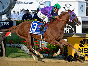 California Chrome wins the 2014 Preakness Stakes.