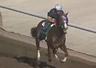 California Chrome Work 09/13/2014