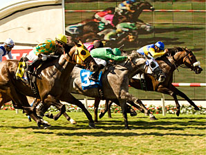 California Flag wins the 2010 Green Flash.