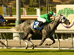California Flag wins the 2009 Morvich.