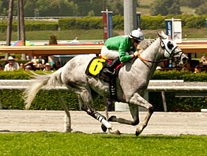California Flag wins the 2012 San Simeon.